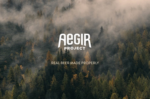 Aegir hand-coded one pager